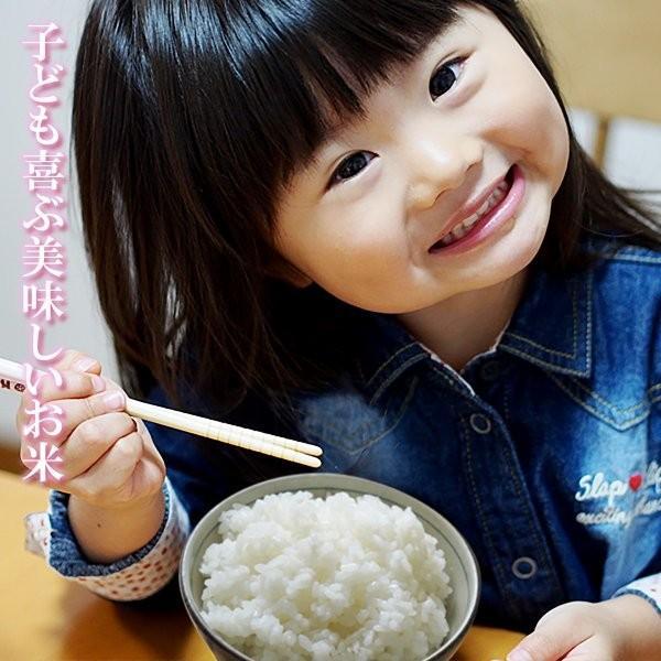 お米 30年産 熊本 阿蘇の特産ギフト 2kg×2袋 コシヒカリ ミルキークイーン C-1セット|mitinoekiaso|03
