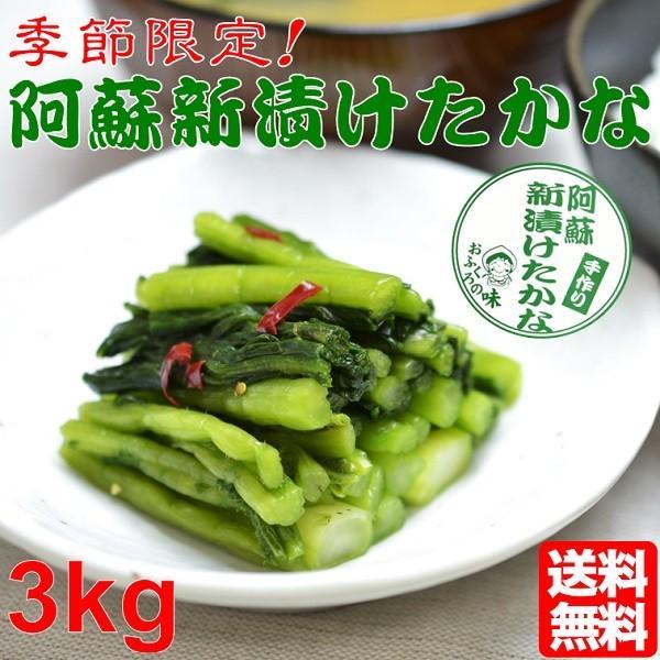 熊本 阿蘇 高菜 新漬たかな 新漬け 漬物 3kg 季節限定 高級 青高菜 人気 絶品 手作り 阿蘇おふくろ工房