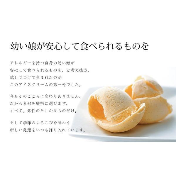 熊本 阿蘇 ギフト パネトーネ&ミルクアイス パン工房豆の木 阿蘇天然アイス 冷凍品|mitinoekiaso|05