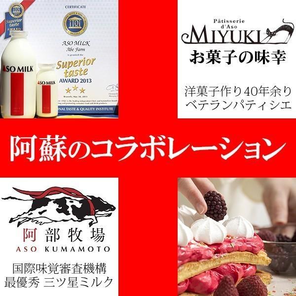 熊本 阿蘇 ギフト 阿蘇ミルクチーズプリン 8個入 お菓子の味幸 木箱入|mitinoekiaso|04