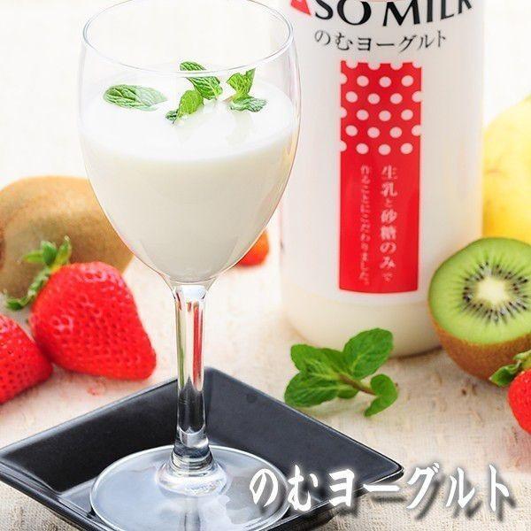 熊本 阿蘇 ギフト 特産品バラエティセット04 阿蘇のドリンク・ハムセット|mitinoekiaso|02