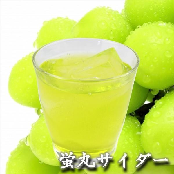 熊本 阿蘇 ギフト 特産品バラエティセット04 阿蘇のドリンク・ハムセット|mitinoekiaso|06