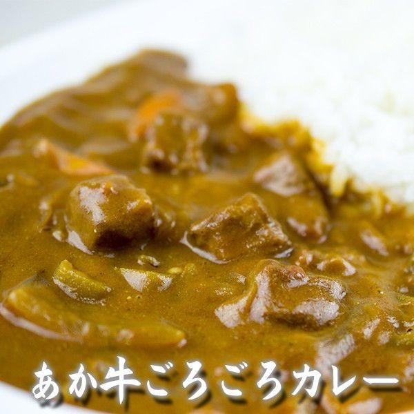 お中元 熊本 阿蘇 ギフト 特産品バラエティセット05 阿蘇のあか牛・馬肉とスイーツのミニセット|mitinoekiaso|03