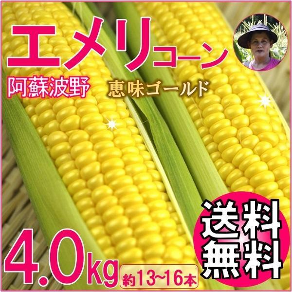 とうもろこし 熊本 阿蘇 お中元 ギフト スイートコーン 波野高原産 エメリコーン 恵味ゴールド 4.0kg