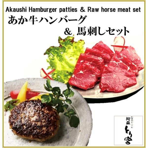 熊本 阿蘇 ギフト 「阿蘇とり宮」の あか牛ハンバーグ  & 馬刺しセット  贈答用  冷凍 T-5