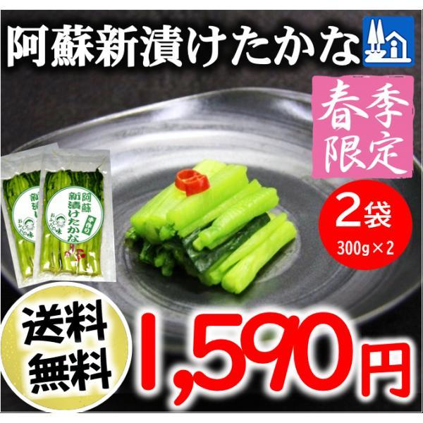 熊本 阿蘇 高菜 漬物 新漬たかな 新漬け 300g×2袋 季節限定 高級 青高菜 人気 絶品 手作り 阿蘇おふくろ工房