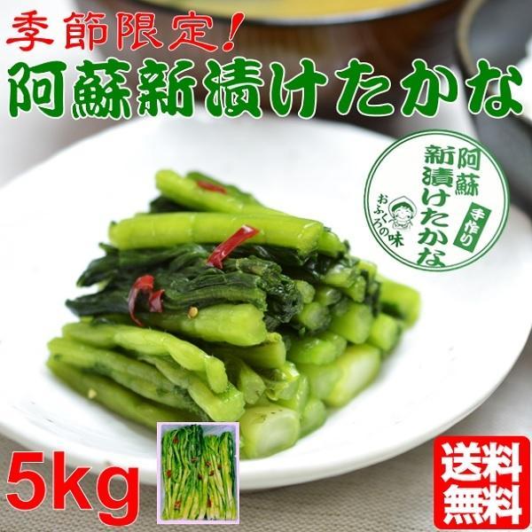 熊本 阿蘇 高菜 漬物 新漬たかな 新漬け 5kg 季節限定 高級 青高菜 人気 絶品 手作り 阿蘇おふくろ工房
