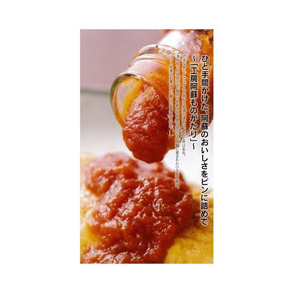 阿蘇産の完熟とまとたっぷり本格手作りケチャップ400g/阿蘇ものがたり|mitinoekiaso|06