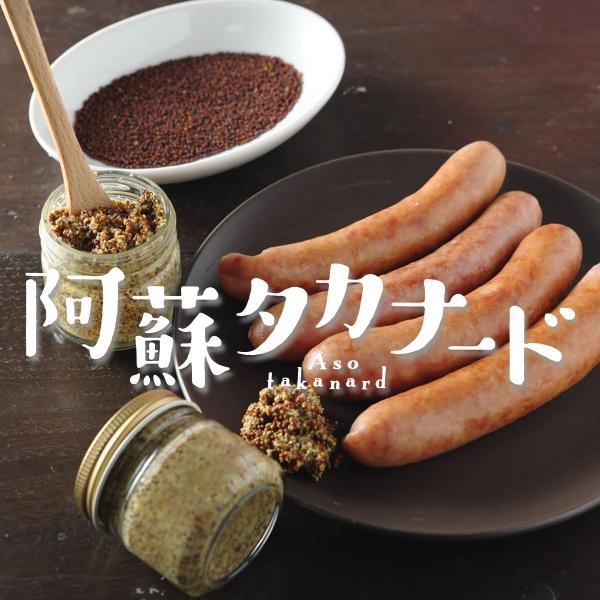 阿蘇高菜の国産マスタード「阿蘇タカナード」70g/阿蘇さとう農園|mitinoekiaso|04