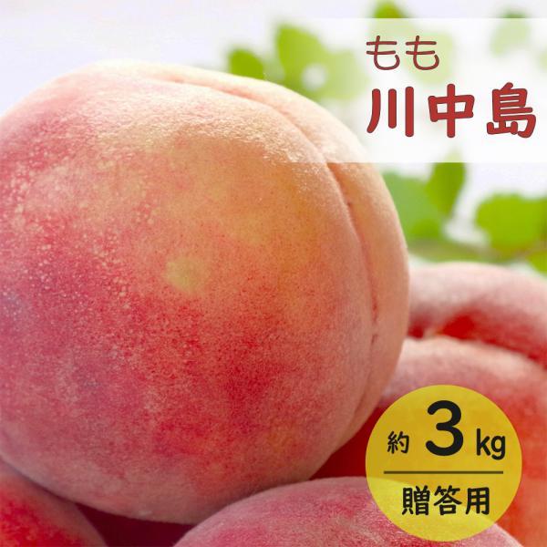 もも 桃 川中島 モモ 約3kg 贈答用 令和3年産 JA 果物 フルーツ 送料無料  8月中旬〜8月下旬順次発送 もも川中島約3kg