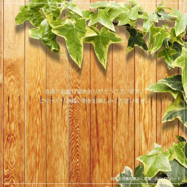 「お手軽 200円」 薬用 入浴剤 森林の香り (25g)|mitsubachi-road|02