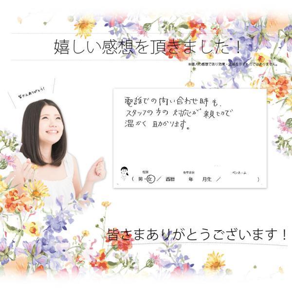 「お手軽 200円」 薬用 入浴剤 森林の香り (25g)|mitsubachi-road|04