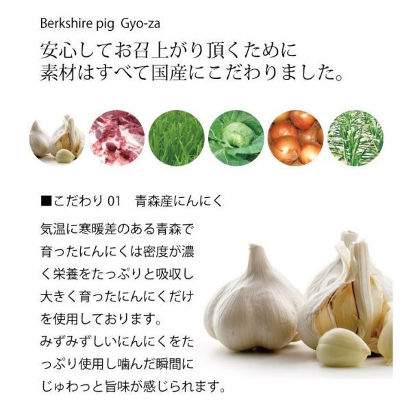 黒豚餃子17g×20 mitsuboshi 02