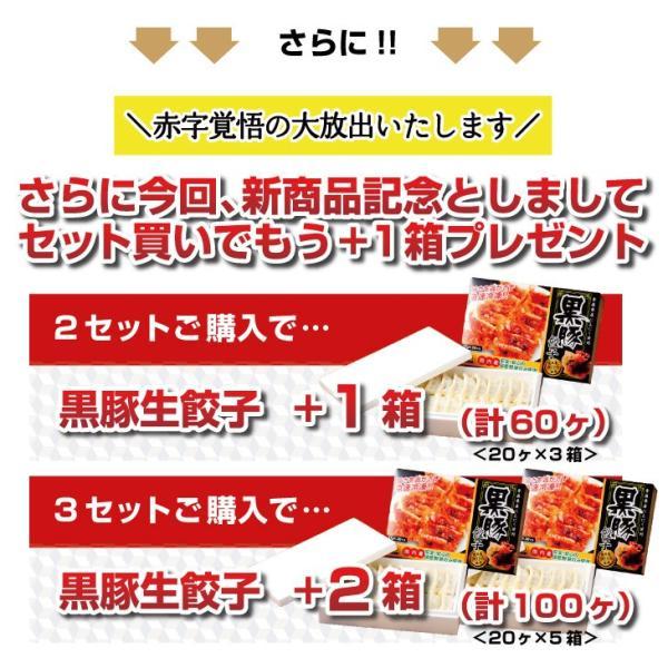 <TVで話題>【板橋】冷凍チャーハン1kg×黒豚生餃子セット|mitsuboshi|03