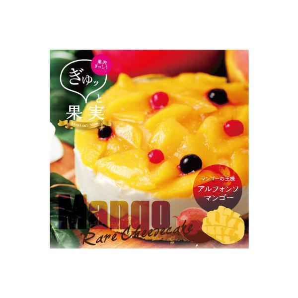 ぎゅッと果実 マンゴーフルーツケーキ マンゴー レアチーズケーキ|mitsuboshi