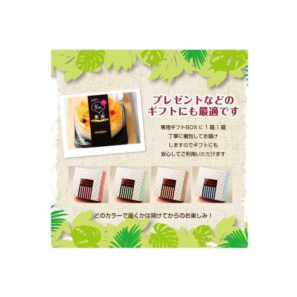 ぎゅッと果実 マンゴーフルーツケーキ マンゴー レアチーズケーキ|mitsuboshi|02