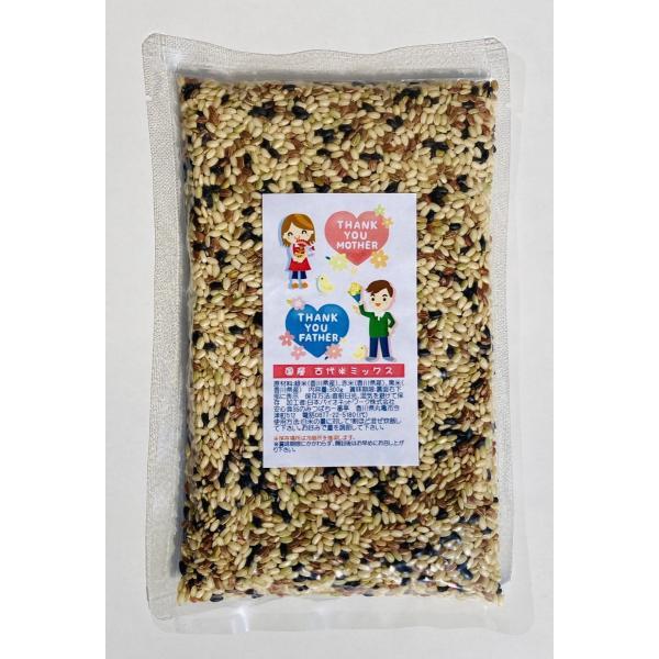 米 雑穀 国産 古代米ミックス 300g 2021ハッピーハロウィン限定デザイン 雑穀米 国産米 ネコポス配送OK
