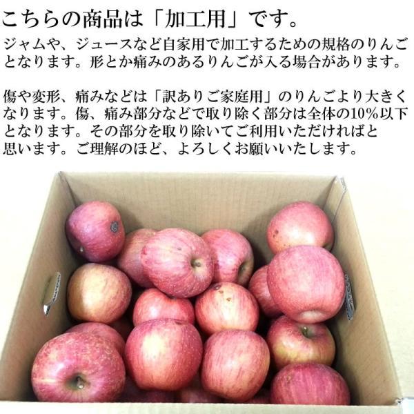 サンふじ りんご 加工用 訳あり 山形県産 10kg ポイント10倍 送料無料 [加工用りんご10キロ]|miuranouen|02