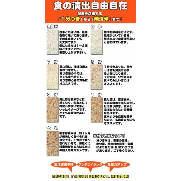 新米 米 お米 どまんなか  玄米30kg 令和元年産 山形産  白米・無洗米・分づきにお好み精米  送料無料 当日精米 あすつく|miuranouen|06