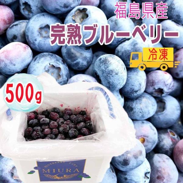 ブルーベリー 500g 福島県産 減農薬 無化学肥料栽培 冷凍