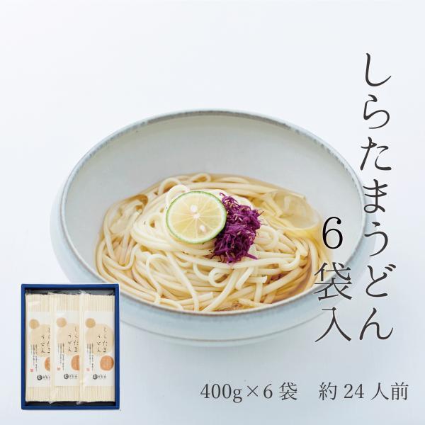そふとうどん「柔麺」6袋 miwasoumen