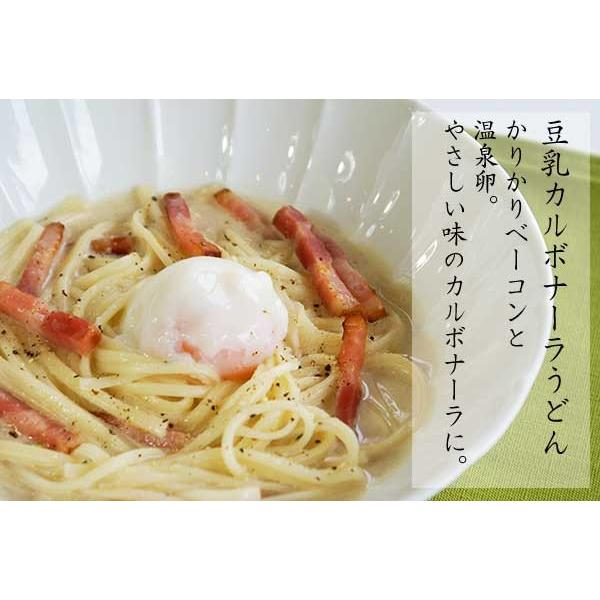 豆乳麺つゆとそうめん|miwasoumen|03