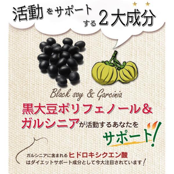 スリムアクティブコーヒー 30包入 ダイエットコーヒー 食物繊維 ガルシニアエキス 黒大豆 ポリフェノール インスタントコーヒー|miyabi-store|04