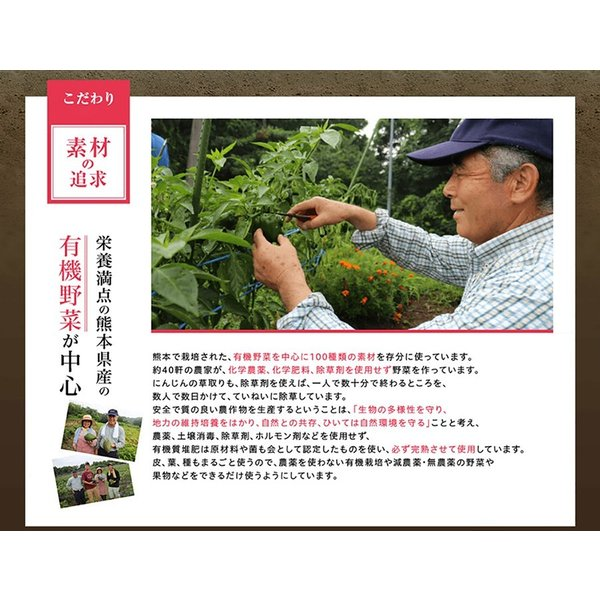 みやびの 贅沢な 植物酵素 100×3袋セット|miyabi-store|10