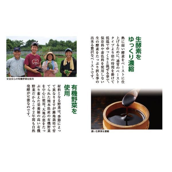 みやびの 贅沢な 植物酵素 100|miyabi-store|05
