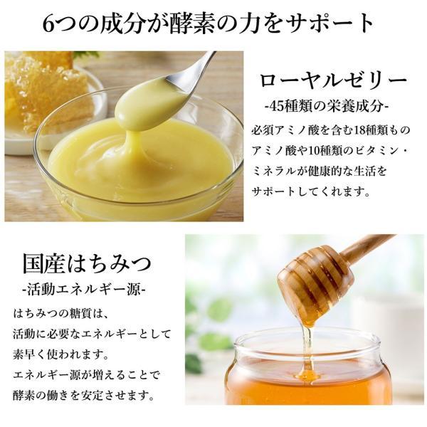 みやびの 贅沢な 植物酵素 100|miyabi-store|07