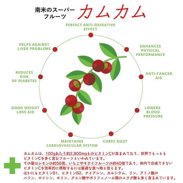 みやびのマルチビタミン 1袋60粒入り×3袋セット ビタミンC、葉酸、ビタミンAなど11種類のビタミン配合|miyabi-store|07