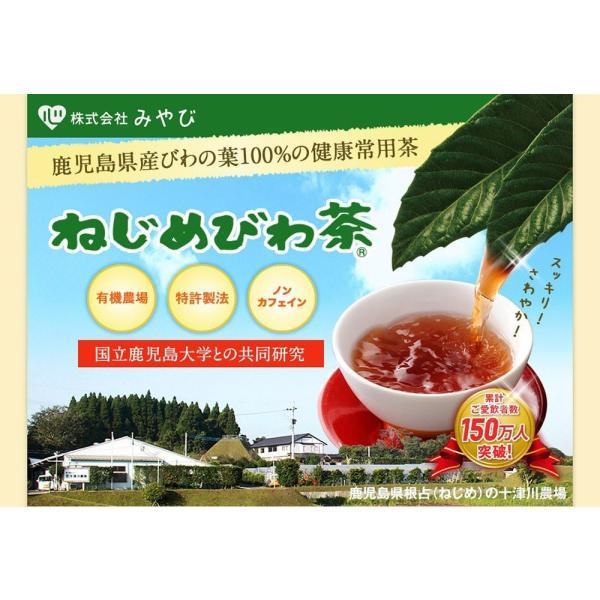 十津川農場 ねじめびわ茶お徳用 2g*200包 鹿児島大学と共同研究の国産ビワ茶|miyabi-store|02
