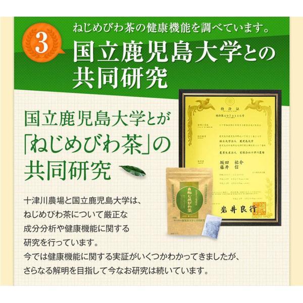 十津川農場 ねじめびわ茶お徳用 2g*200包 鹿児島大学と共同研究の国産ビワ茶|miyabi-store|12