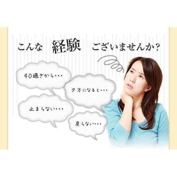 十津川農場 ねじめびわ茶お徳用 2g*200包 鹿児島大学と共同研究の国産ビワ茶|miyabi-store|03