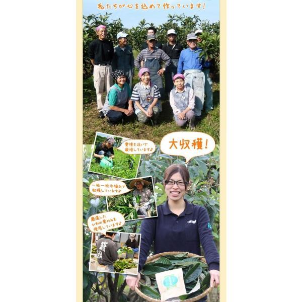十津川農場 ねじめびわ茶お徳用 2g*200包 鹿児島大学と共同研究の国産ビワ茶|miyabi-store|07