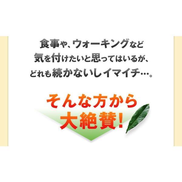 十津川農場 ねじめびわ茶 2g*31包 鹿児島大学と共同研究の国産ビワ茶|miyabi-store|04
