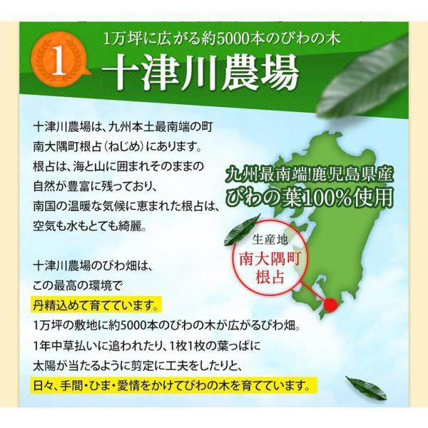 十津川農場 ねじめびわ茶 2g*31包 鹿児島大学と共同研究の国産ビワ茶|miyabi-store|06