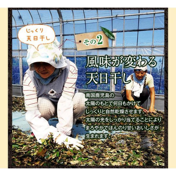 十津川農場 ねじめびわ茶 2g*31包 鹿児島大学と共同研究の国産ビワ茶|miyabi-store|09