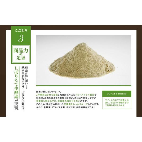 酵素サプリメント みやびの植物酵素サプリ100 3袋セット|miyabi-store|12