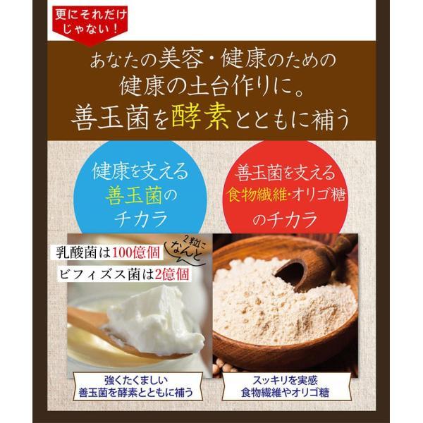 酵素サプリメント みやびの植物酵素サプリ100 3袋セット|miyabi-store|13