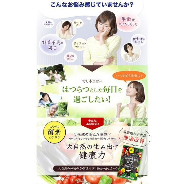 酵素サプリメント みやびの植物酵素サプリ100 3袋セット|miyabi-store|06