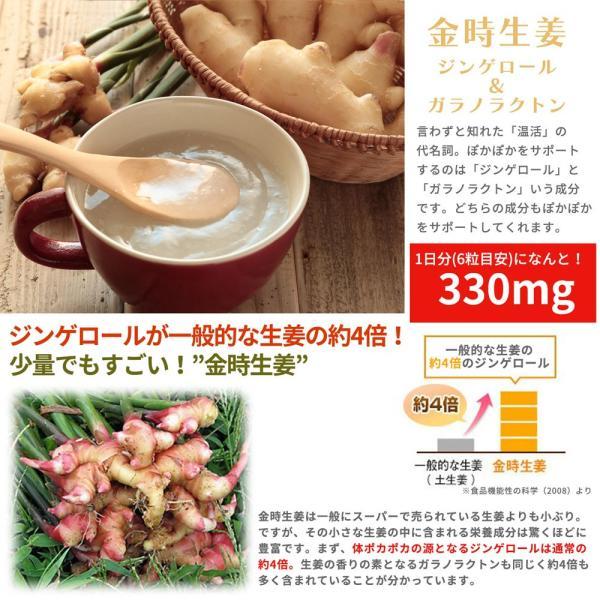 金時しょうがサプリ 生姜生活 メール便なら送料324円|miyabi-store|04