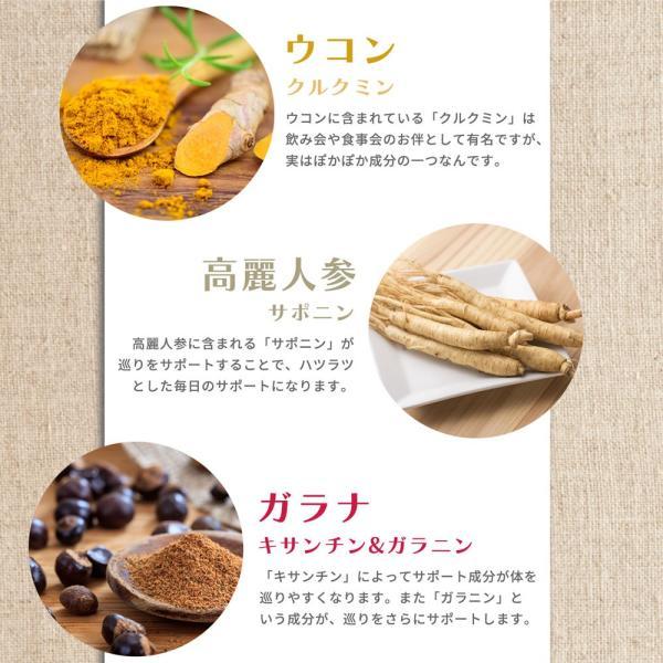 金時しょうがサプリ 生姜生活 メール便なら送料324円|miyabi-store|05