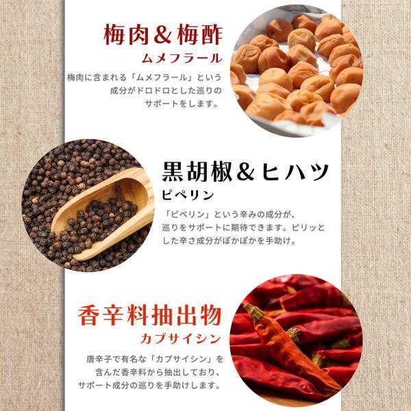 金時しょうがサプリ 生姜生活 メール便なら送料324円|miyabi-store|06