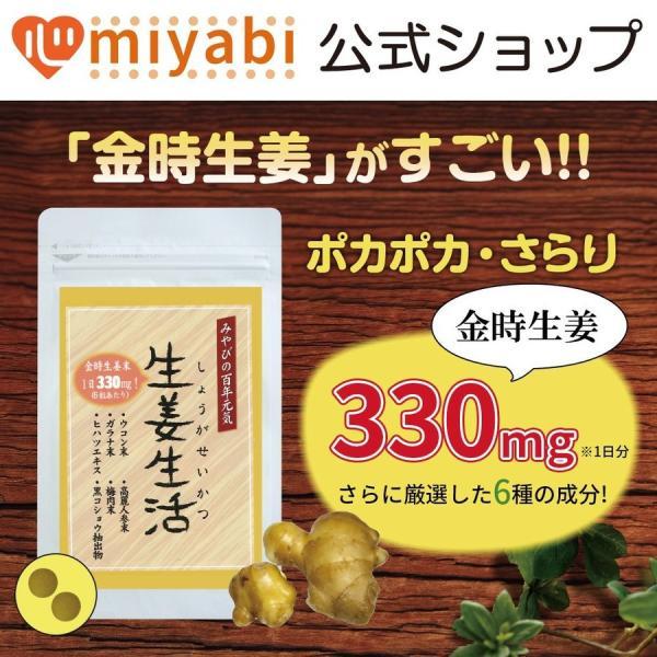 金時しょうがサプリ 生姜生活 メール便なら送料324円|miyabi-store|08