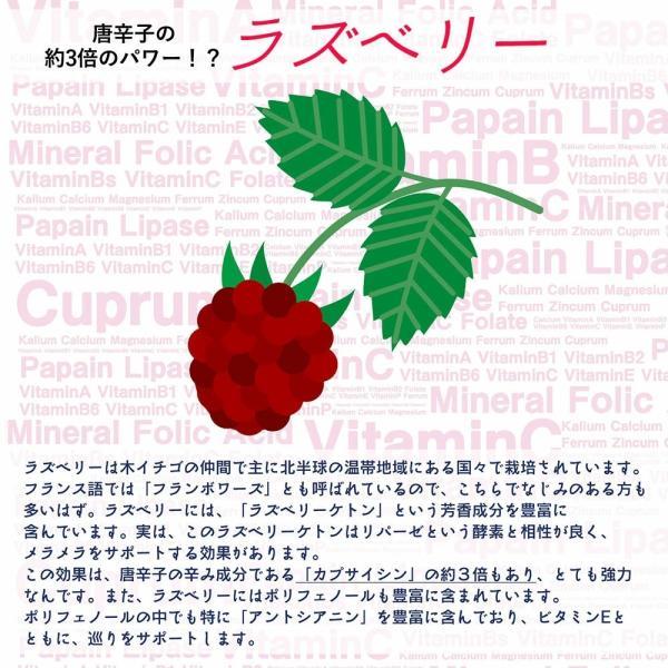 青パパイヤ酵素のチカラ パパイヤ&ラズベリー ダイエットサポート|miyabi-store|03
