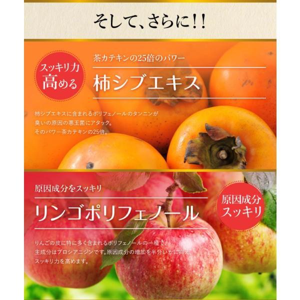 爽臭サプリ 口臭 体臭 加齢臭対策に 最近話題の 消臭サプリはみやびの爽臭サプリ 2袋セット|miyabi-store|14