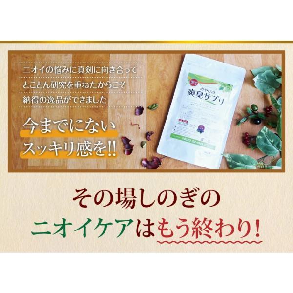 爽臭サプリ 口臭 体臭 加齢臭対策に 最近話題の 消臭サプリはみやびの爽臭サプリ 2袋セット|miyabi-store|15