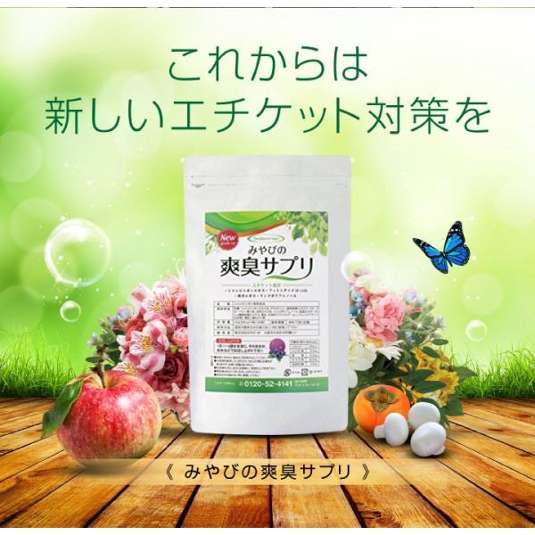 爽臭サプリ 口臭 体臭 加齢臭対策に 最近話題の 消臭サプリはみやびの爽臭サプリ 2袋セット|miyabi-store|19
