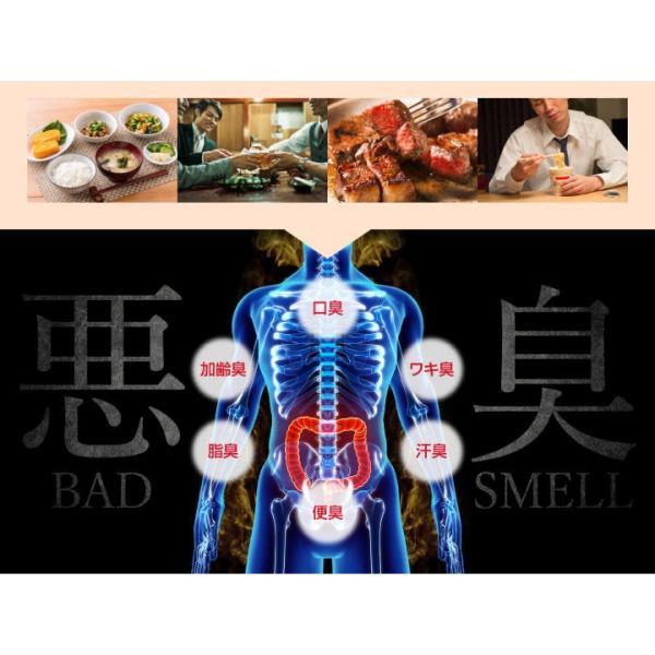 爽臭サプリ 口臭 体臭 加齢臭対策に 最近話題の 消臭サプリはみやびの爽臭サプリ 2袋セット|miyabi-store|06